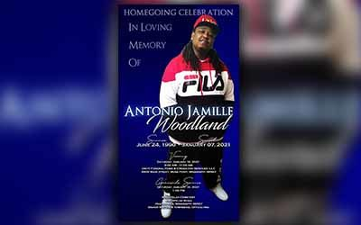 Antonio-Jamille-Woodland-1990-2021